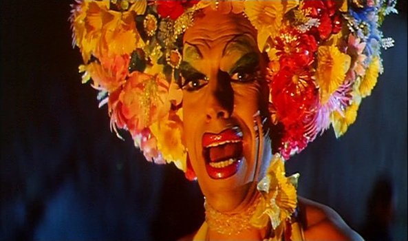 Adventures of Priscilla, Queen of the Desert (I Will Survive)